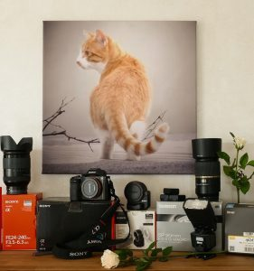 photography equipment photo 281x300 - photography-equipment-photo
